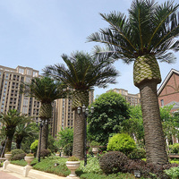 仿真海枣树 Artificial Date Palm Tree