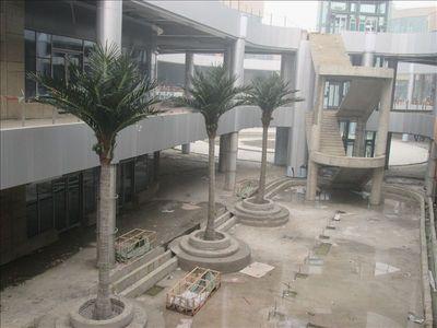 安徽芜湖中央城 (1).JPG